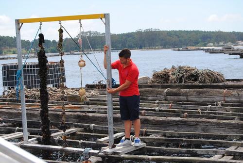 Aquí en Galicia con nuestro grupo de Viaje de España Vale,embarcados, hemos podido ver y degustar los frutos del mar yenterarnos de alguna leyenda del lugar. Las bateas, son balsas […]