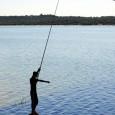 El mundo tiene sed porque tenemos hambre. El 12 de marzo 2012 empezó en Marsella el 6º Foro Mundial del Agua 2012. Se reunieron gobiernos, agencias humanitarias y expertos de […]