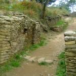 Castro de Borneiro y Dolmen de Dombate