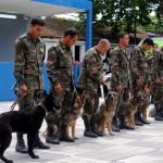 Romer� a en la quinta de Casa de Galicia, con demostración del plantel de perros.