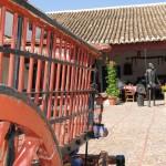 Cervantes, la aventura de leer y recorrer la ruta del Quijote con España vale (Video)