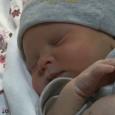     Se llama Adrián y es el primer bebe nacido en el 2014 en Baleares El primer español del año se llama Tanai, es un niño que […]