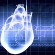 Se obtienen de tejido cardiaco desechado durante intervenciones de corazón Los siete pacientes a los que se ha tratado tienen una evolución muy favorable El hospital Gregorio Marañón, de Madrid, […]