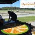 Se ha realizado la paella solidaria en el hipódromo de maroñas a beneficio de la obra del Dr. Caritat. LARGARON!!! Se corrieron 2 carreras de caballos en apoyo para recaudar […]